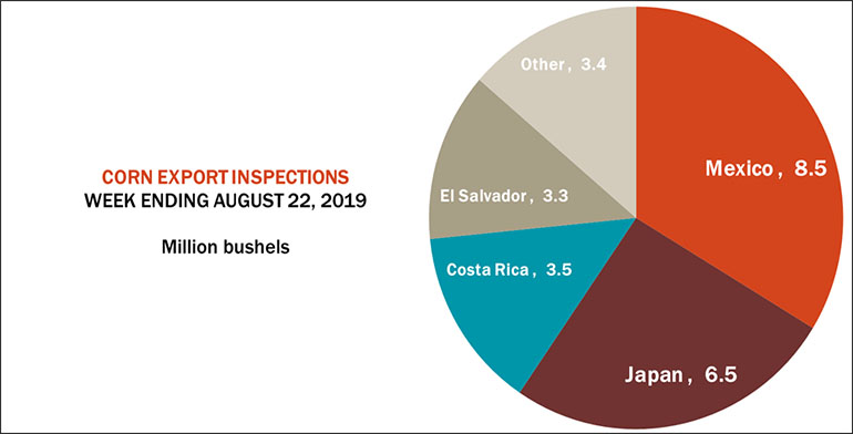 082619CornExportInspects770.jpg
