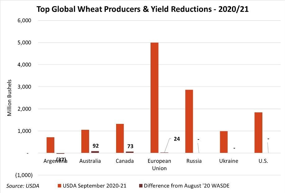 top global wheat producers and yield reductions 2020-21