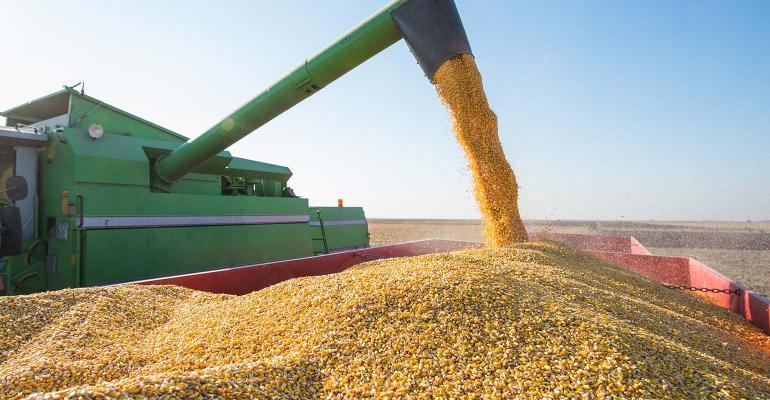 green combine dumping corn into wagon