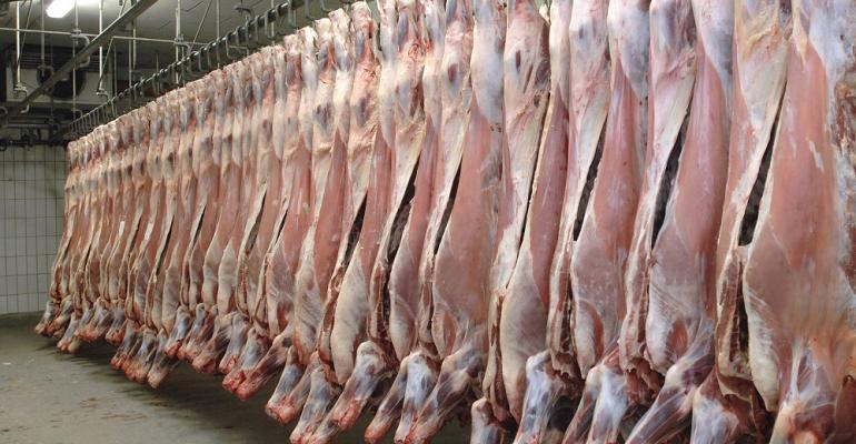 beef carcasses in cooler