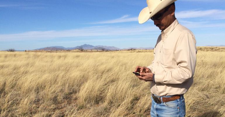 USDA-NRCS rangeland scientist Emilio Carrillo tests the new LandPKS mobile app on his smartphone.