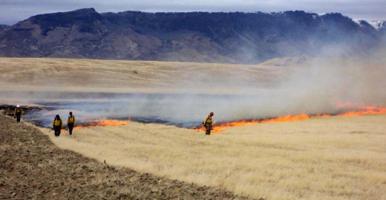 Prescribed burn to remove cheatgrass in Izzenhood, Nevada.