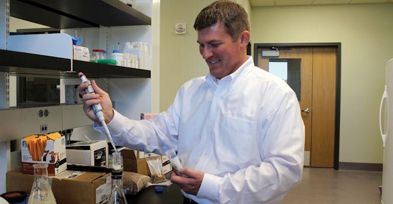 wheat research Kansas State