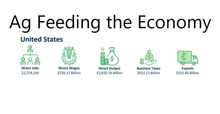 Feeding the Economy.jpg