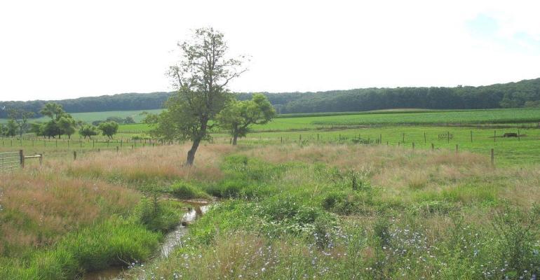 stream running through field