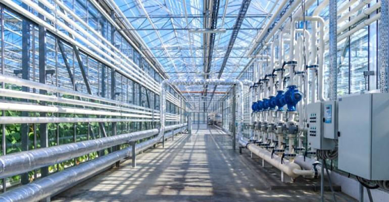 Hydroponic greenhouse.jpg