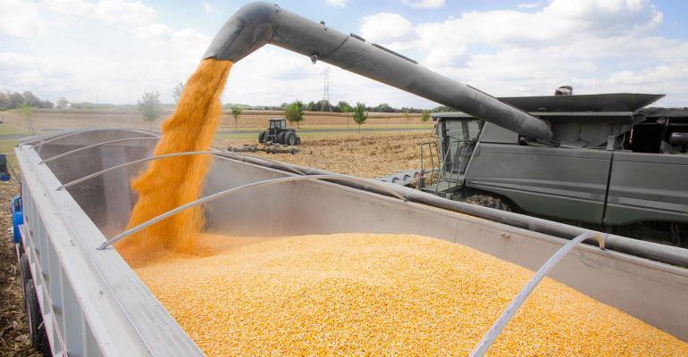 Unloading corn into semi from gray combine