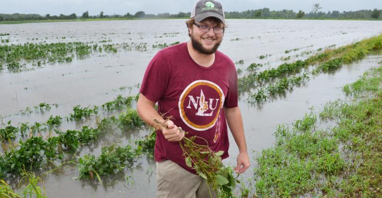 Lousiana Farmer harvey flooding