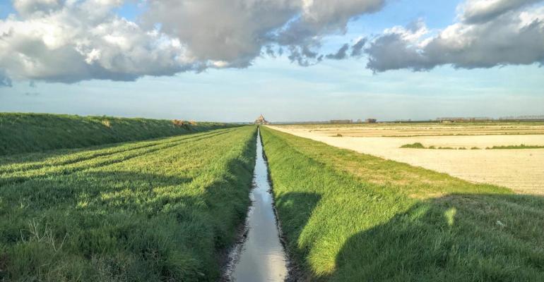 streams can be key health indicators