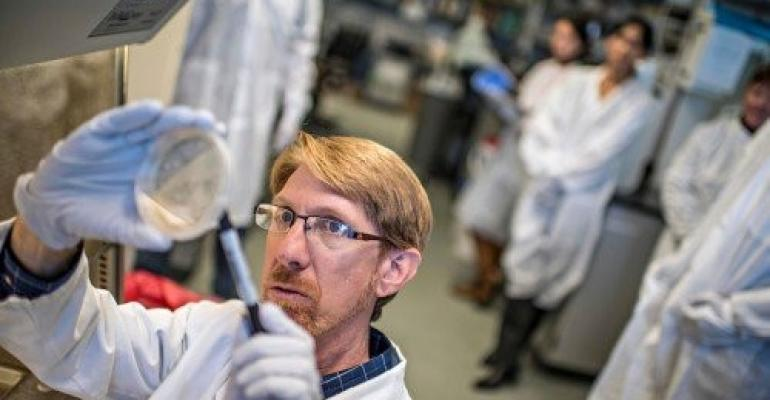 Geneticist Joseph Busch, an associate director of NAU's Pathogen & Microbiome Institute, is one of the world's leading experts on the genetic makeup of cattle fever ticks.
