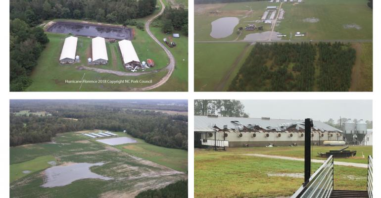 NCPC collage hurrican florence