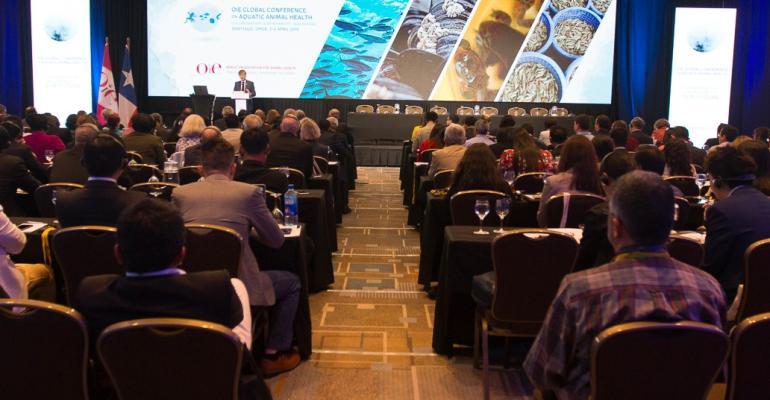 OIE Global Conference on Aquatics.jpg