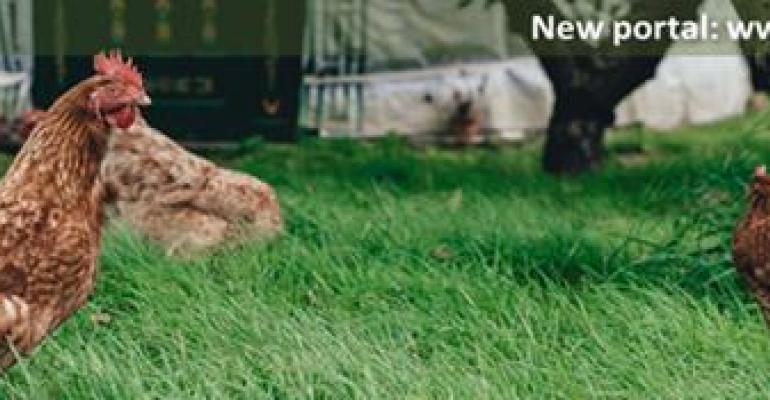 OIE launches new web portal on avian flu