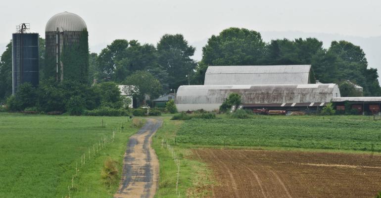 Organic farm with beef, dairy, chickens and farmland