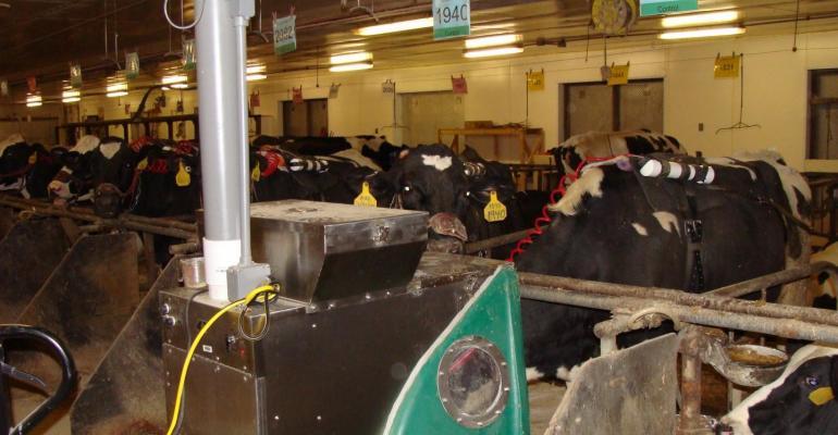 Penn State seaweed methane cows.jpg