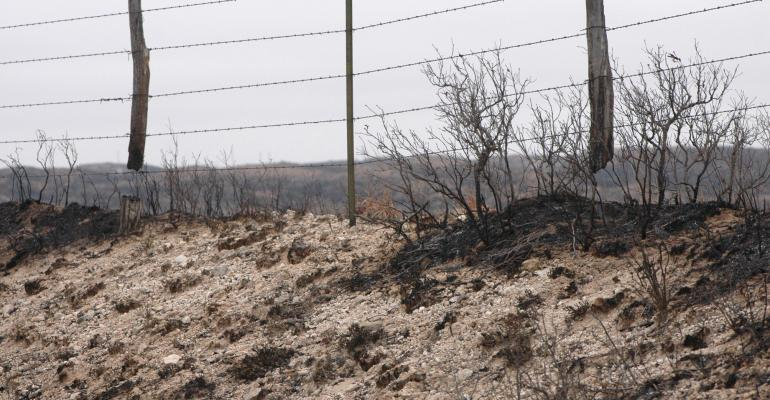 Wildfire can leave posts damaged and in need of replacement, but the barbed wire could still be usable, according to a study.