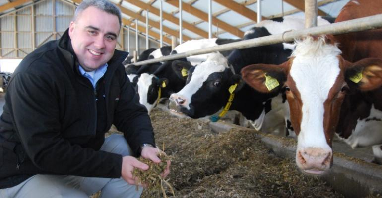 Tom Overton kneeling next to dairy cows