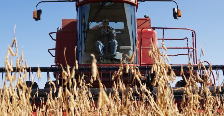 combine in soybean field