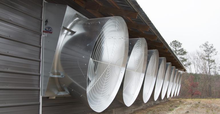 Tunnel-Fans