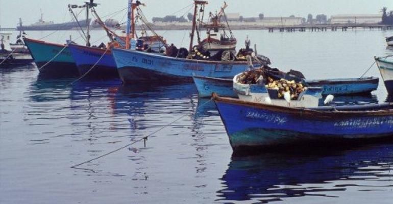 Fishing boats off the coast of Peru.