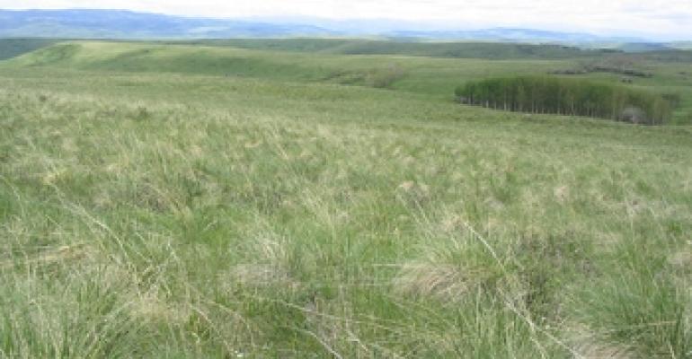 University of Alberta Onefour ranch