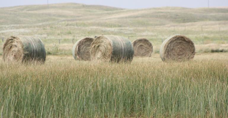 University of Nebraska Walz hay bales.jpg