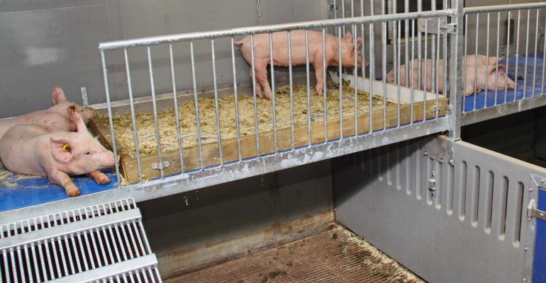 two tier plateau swine housing