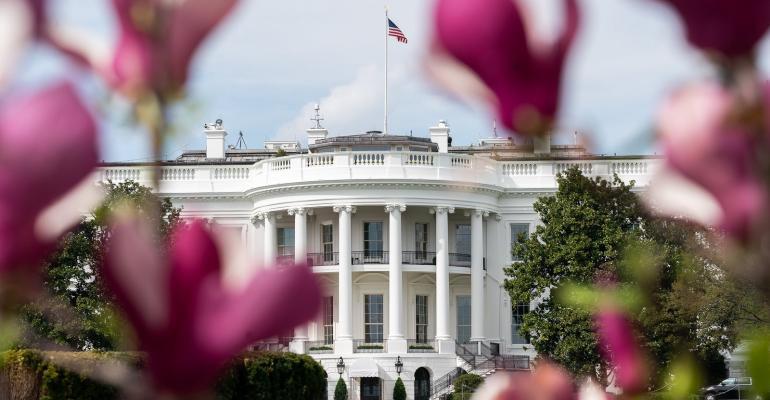 White House spring.jpg