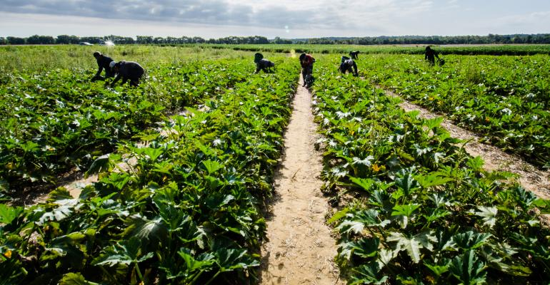 ag workers migrant labor