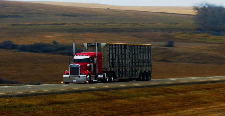 Beef Quality Assurance launches new transportation program | Feedstuffs