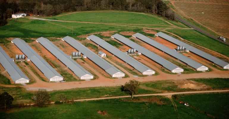 aerial view of poultry farm barns