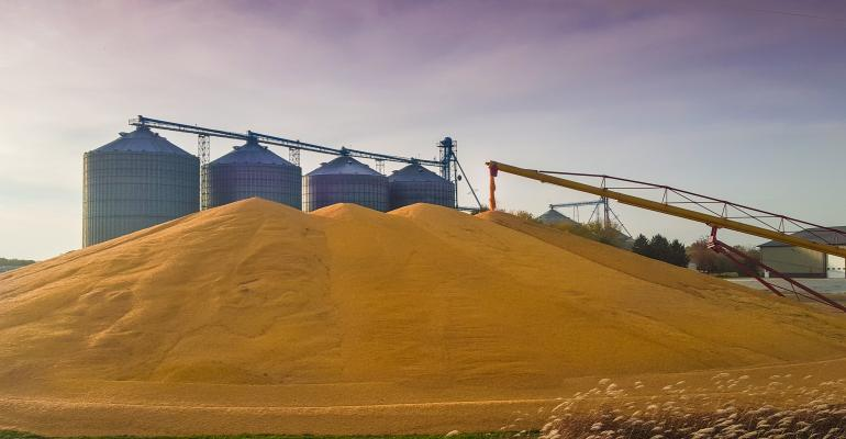 corn pile in front of grain bins