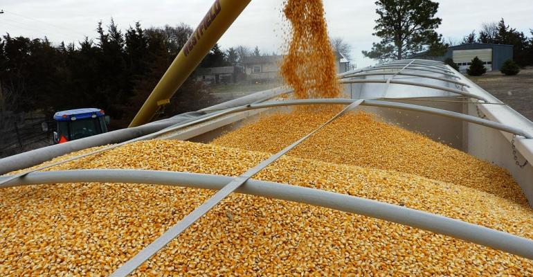 truck load corn