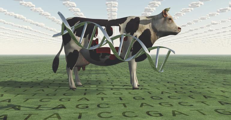 cow_research_dna_bestdesigns_iStock-476097233.jpg