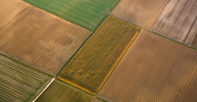 crop fields-shutterstock_69961156.jpg