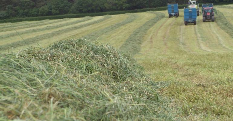 cutting grass for silage_Ingram Publishing-122535984.jpg