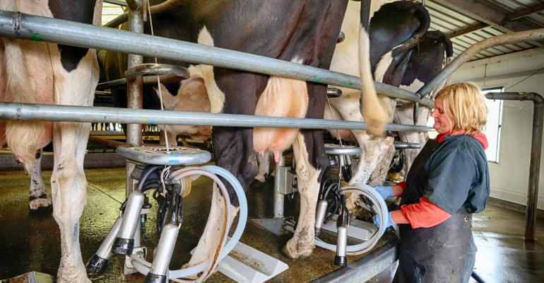 dairy farmer milking cows_JESP62_iStock_Thinkstock-472866698.jpg