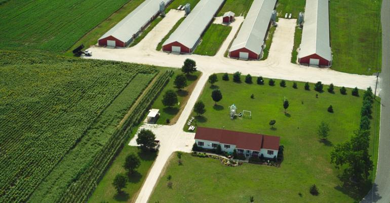 delmarva poultry farm
