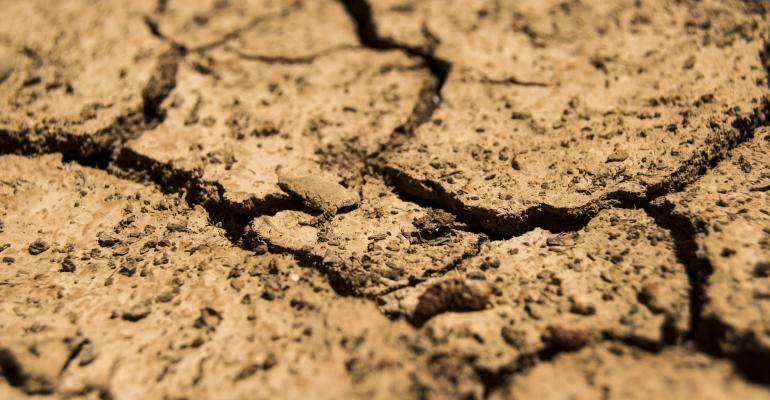 drought ground