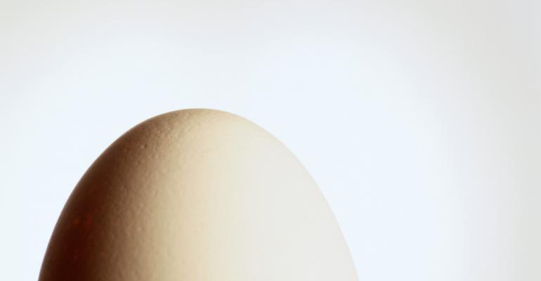 egg _Photodisc_FD005175.jpg