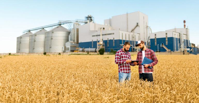 farmers in wheat field with computer tablet