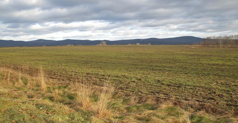 weather field