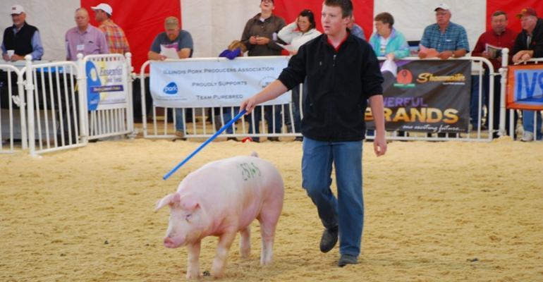 World Pork Expo swine shows drew a standingroomonly crowd
