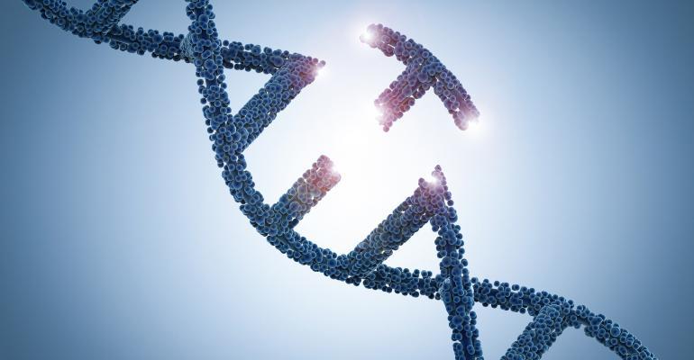 gene editing strand of DNA