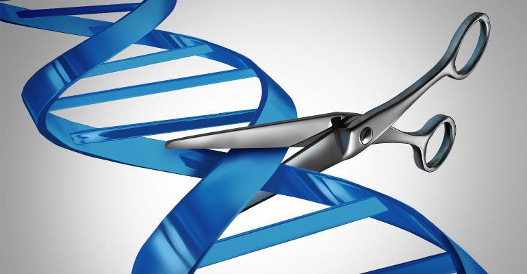 gene editing DNA cutting scissors