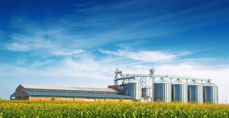 grain silos in background of green corn field