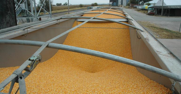 Many farmers are now in the process of storing their grain in bins until they are ready for the right time to sell Photo Kathy Huting
