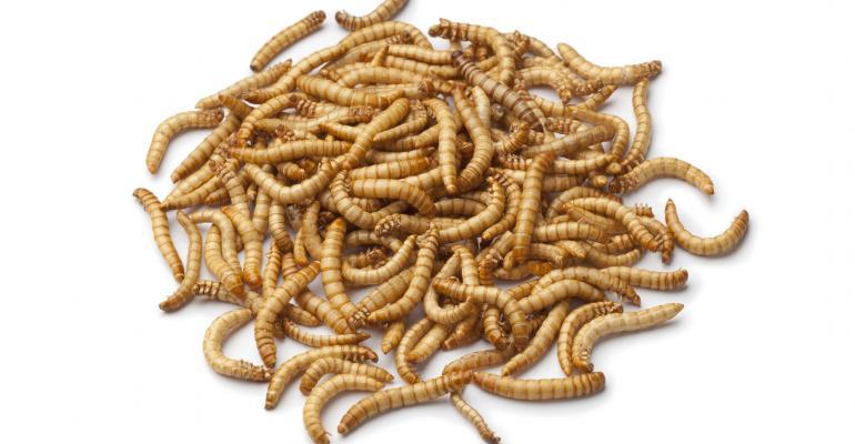 mealworms larva_PicturePartners_iStock_Thinkstock-136504817.jpg