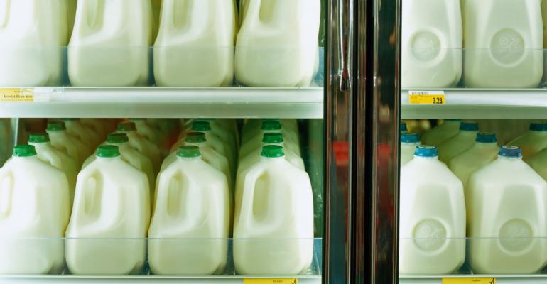 Milk jugs in a grocery dairy case