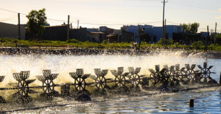 shrimp pond aeration